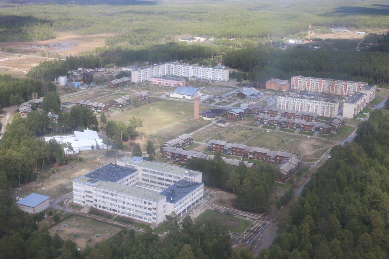 Томская область кедровый фото